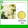 Top Quality Quercetin Dihydrate 6151 25