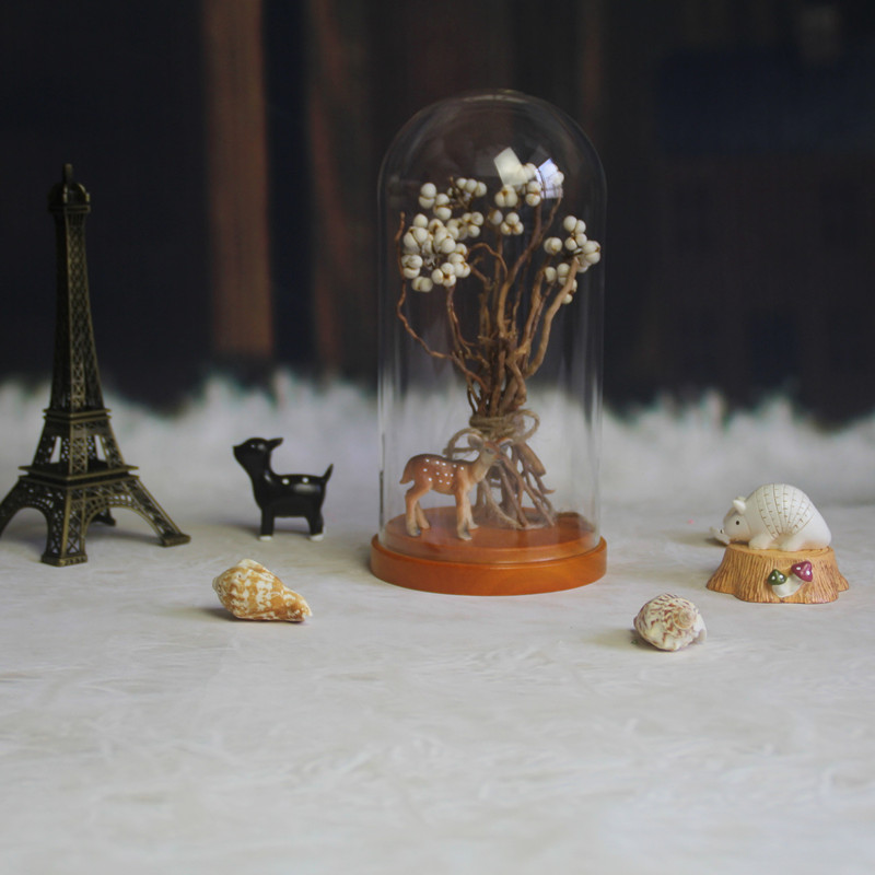 Factory Direct Sales Clear Glass Cloche With Wooden Base / Glass Dome 10*20cm