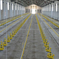 Huabo broiler poultry farm shed design