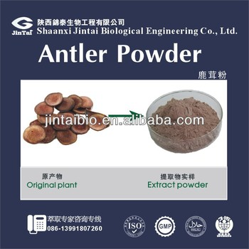 watersoluble 10:1 20:1 high quality deer antler velvet extract