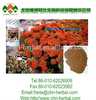 /product-detail/factory-supply-100-natural-3-rhodiola-rosea-extract-herbal-extract-60378680516.html