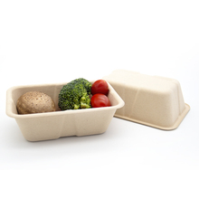 Natural Bamboo Plant Fiber Isolated Hot And Cold Catering Food Boxes