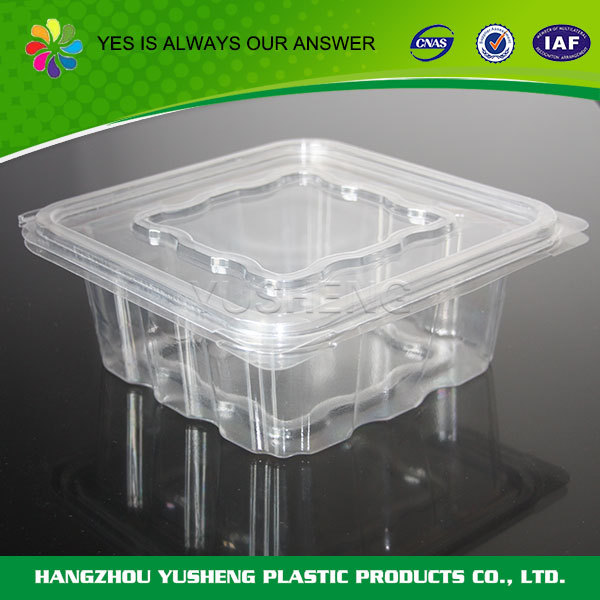 Disposable salad container,food grade plastic container