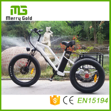 lithium battery operated cargo 3 wheels long range fat tire electric trike for sale