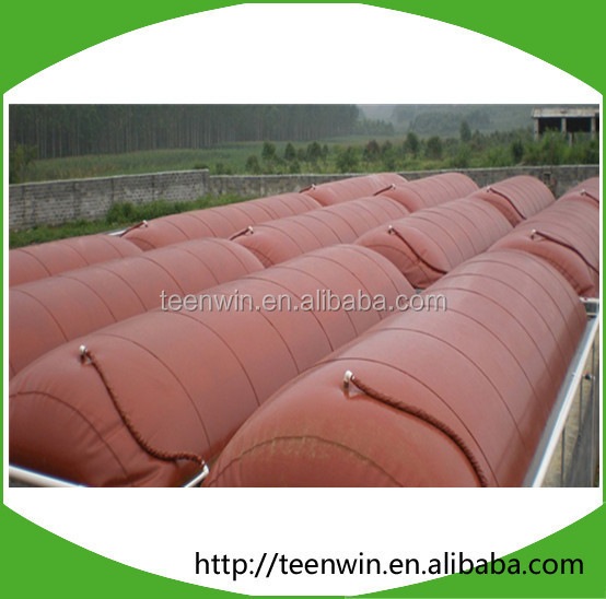 Teenwin biogas plant for 100m3/d biogas production