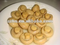 Mushroom Manufacturing Canned Mushrooms Champignons Choice Whole