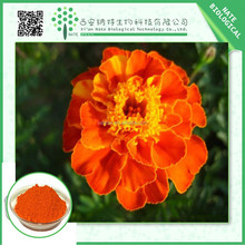 Hot sales product TAGETES ERECTA EXTRACT xanthin 10%,20%,80%,xanthin extract,xanthin powder with competitive price
