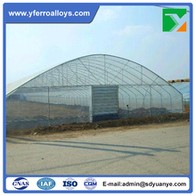 Factory High Quality PE Film Covering and Simple Tunnel Structure Greenhouse with Best Price
