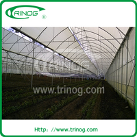 Plastic Film Covered Agricultural Greenhouse For