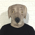 latex labrador head mask