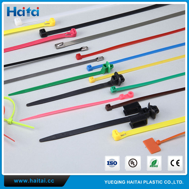 Haitai China Good Quality Various Types Functional Nylon Mount Head Cable Ties