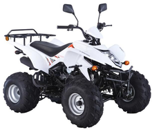 250cc motorcycles 4x4 ATV 100CC 110CC 150CC beach car 125cc china atv