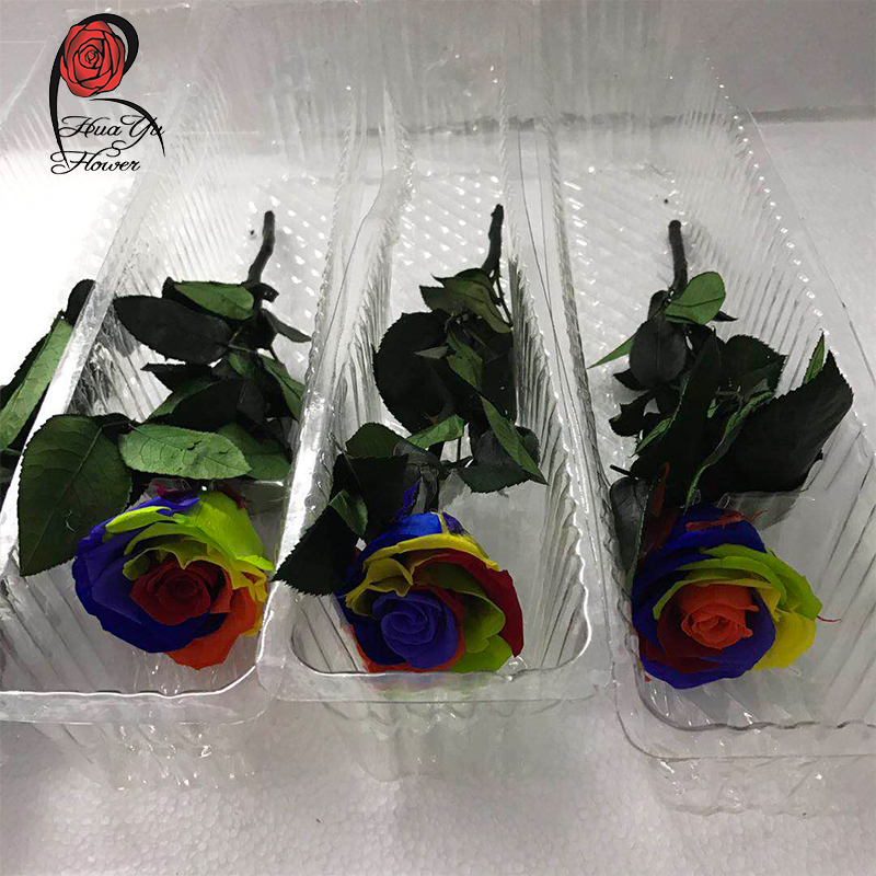 wholesale price A grade 5-6cm preserved roses for mothers day