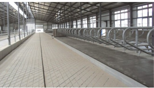 Rubber Stable Mat, Rubber Cow Mat, Rubber Flooring For Dairy Cow Mat