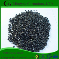 Low Price Filter Anthracite Coal made in China