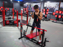 Techno Back Extension/Commercial Gym Equipment/Low Row Machine