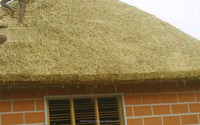 Thatch Hut Builders in India