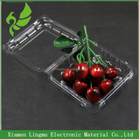 Cheap Food Grade Disposable Plastic Packaging Tray For Fruit