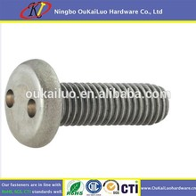Manufacturer custom all size stainless steel Snake two holes Security screw