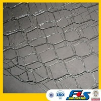 Anping Hot Sale Chicken Wire Mesh(Factory Price)