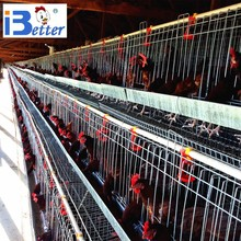 BETTER Factory uganda poultry farm automatic layer chicken cage (welcome to visit our abroad chicken farm)