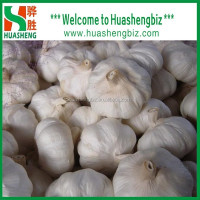 2016 Fresh and Dry Garlic - Chinese Garlic Exporters