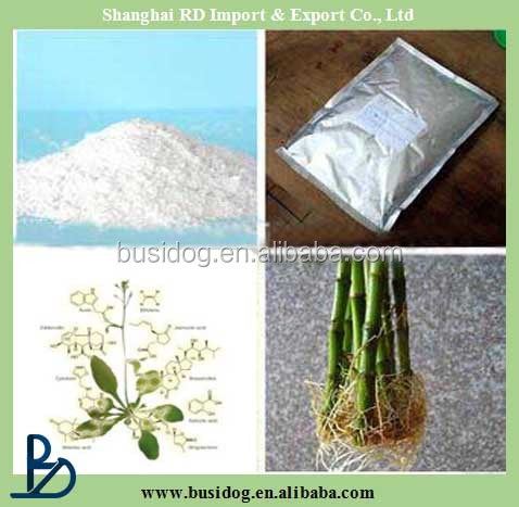 Plant root growth fertilizer Indole Butyric Acid IBA / indole-3-butyric acid 1% + naphthylacetic acid 1%SP