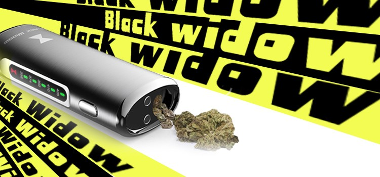 Hot wholesale price pens for sale black widow vaporizer dry herb wax