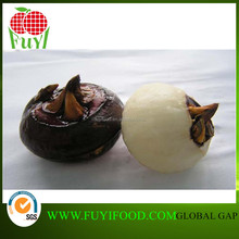 CHINESE WATER CHESTNUT BEST QUALITY CHEAP PRICE HOTSALE