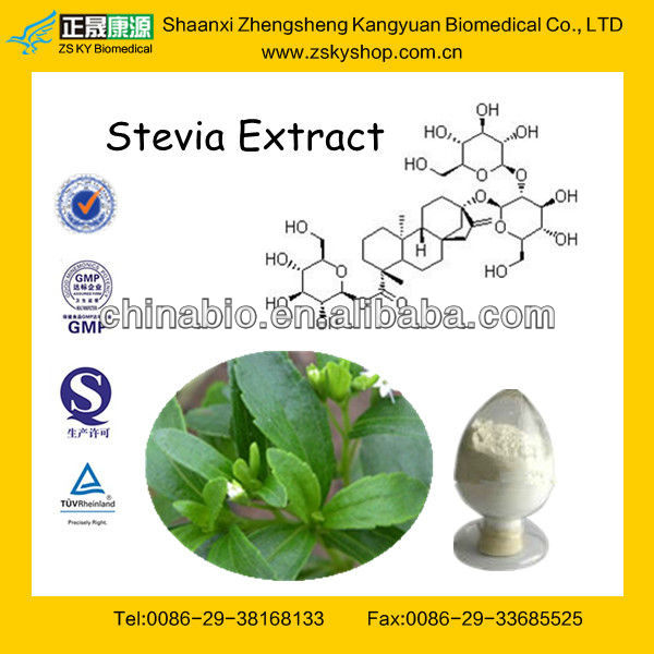 GMP Manufacturer Supply Stevia Extract Reb A