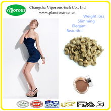 Free sample Green Coffee Bean Extract Powder / Coffea arabica extract / chlorogenic acids
