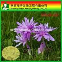 Manufacturer Supply Colchicum autumnale extract Colchicine powder