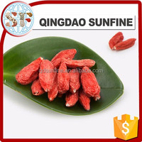 The pure natural fresh goji berry price with high quality