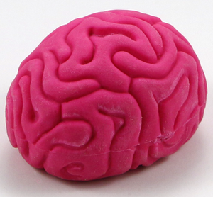 Cheap 3D Funny Brain Shaped Pencil Rubber Eraser