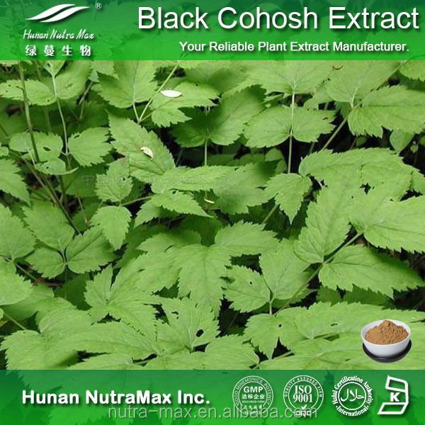 Black Snakeroot Extract, Black Snakeroot Extract Triterpenes, Black Snakeroot Extract 20:1