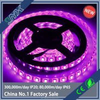 Latest Technology 4mm wide led strip smd 5050 5m 300leds 60leds/m ultra bright 12v 14.4w pass CE&ROHS led strip light price
