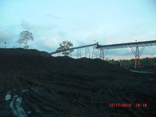 Kalimantan Steam Coal Caloric GAR 5300 - 5500 (ARB)