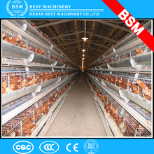 Broiler Chicks Rearing Cages/Growing Broiler Chicken Cage For Sale
