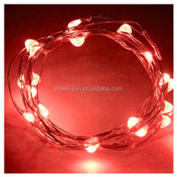 Battery Power 2m Long 20 LED Outdoor Decoration Christmas Copper LED String Light