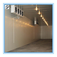 Industrial cold room refrigeration unit for meat fish vegetables