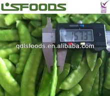 Perfect New season IQF frozen pea pods