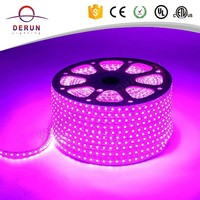 10mm PCB 50m single RGB color changing 5050 240V led strip