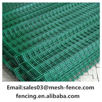 PVC Coated High quality Welded Wire Mesh Rolls/1/4 inch Galvanized Welded Wire Mesh in roll