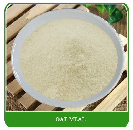 Health nutrition cereal powder Instant oat powder