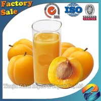 Apricot Puree Single Strength in Aseptic Drums