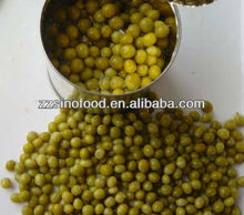 china canned processed green peas