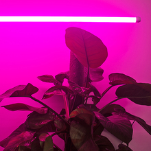 Full Spectrum red 0.5m LED lamp 18W Grow Tube Light AC85~265V For Greenhouse Hydroponics Plant