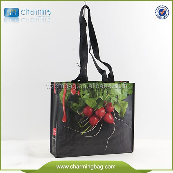 Easy Shopper Non Woven Bag