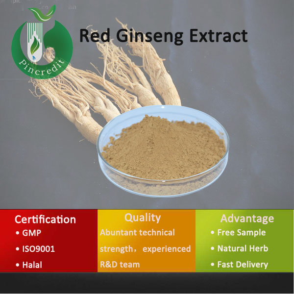 korean red ginseng /ginseng kianpi pil/ginseng root extract