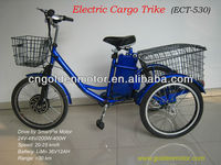 electric cargo tricycle with our Smart Pie Hub Motor